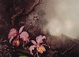 Martin Johnson Heade - Two Orchids in a Mountain Landscape