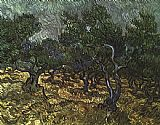 Vincent Van Gogh Canvas Paintings - The Olive Grove